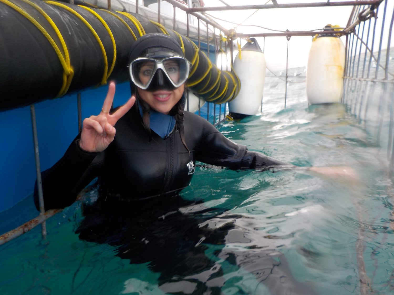 Sandra jaula tiburones